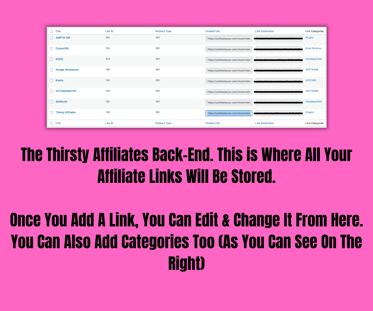 How To Track & Manage Affiliate Links (The Easy Way)
